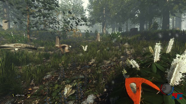 Screenshot - The Forest (PC) 92498541