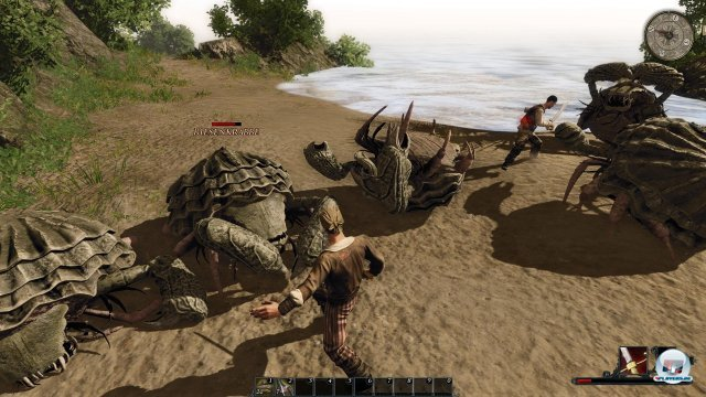 Screenshot - Risen 2: Dark Waters (PC) 2344622