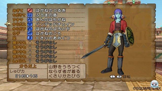 Screenshot - Dragon Quest X Online (Wii) 2289937