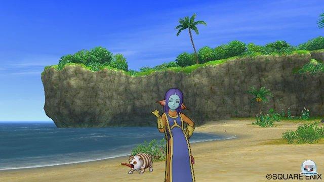 Screenshot - Dragon Quest X Online (Wii) 2289962