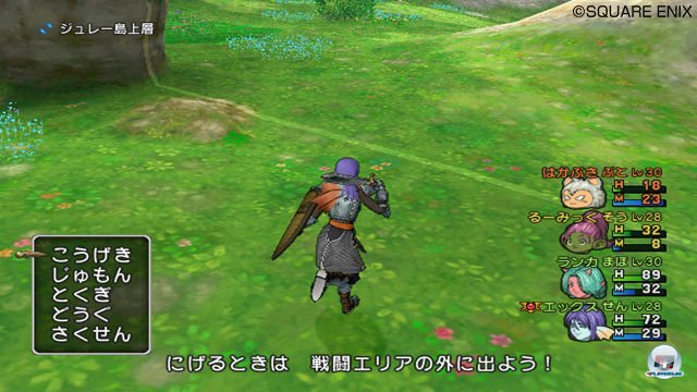 Screenshot - Dragon Quest X Online (Wii) 2287212