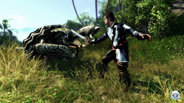 Screenshot - Risen 2: Dark Waters (PC) 2222774