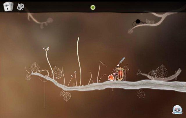 Screenshot - Botanicula (PC) 2343612