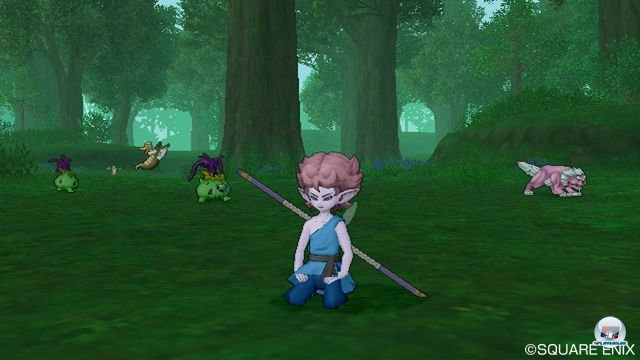 Screenshot - Dragon Quest X Online (Wii) 2277617