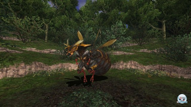 Screenshot - Final Fantasy XI (360) 92447882