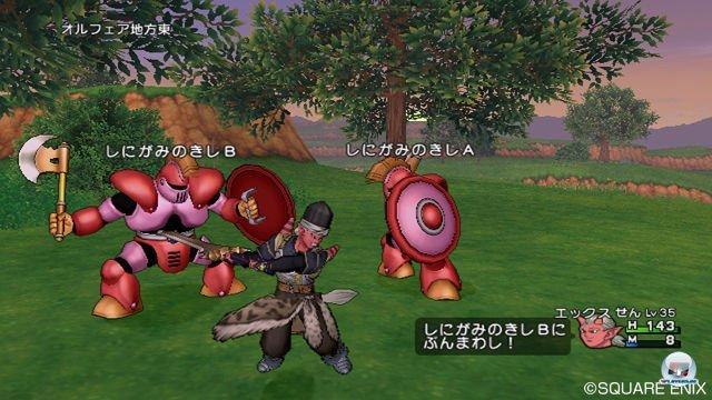 Screenshot - Dragon Quest X Online (Wii) 2289942