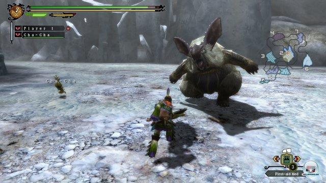 Screenshot - Monster Hunter 3 Ultimate (Wii_U) 92424632