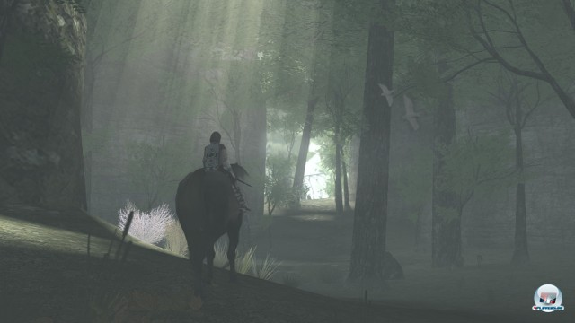 Screenshot - ICO & Shadow of the Colossus HD (PlayStation3) 2233792