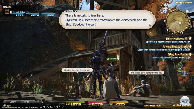 Screenshot - Final Fantasy XIV Online (PlayStation3) 92411742