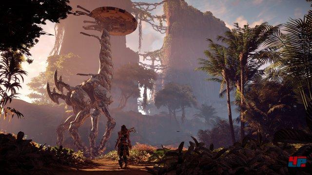 Screenshot - Horizon: Zero Dawn (PS4)