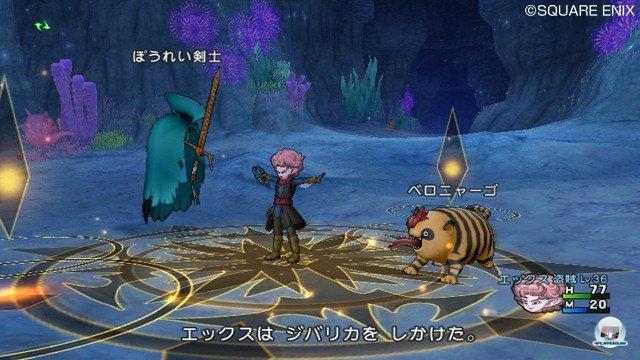 Screenshot - Dragon Quest X Online (Wii) 2370782