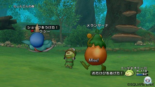 Screenshot - Dragon Quest X Online (Wii) 2295627