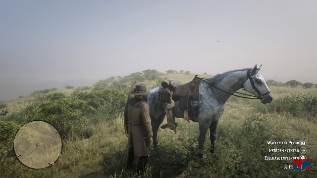 Screenshot - Red Dead Redemption 2 (PS4) 92576289