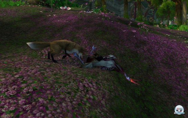 Screenshot - World of WarCraft: Mists of Pandaria (PC) 2334447