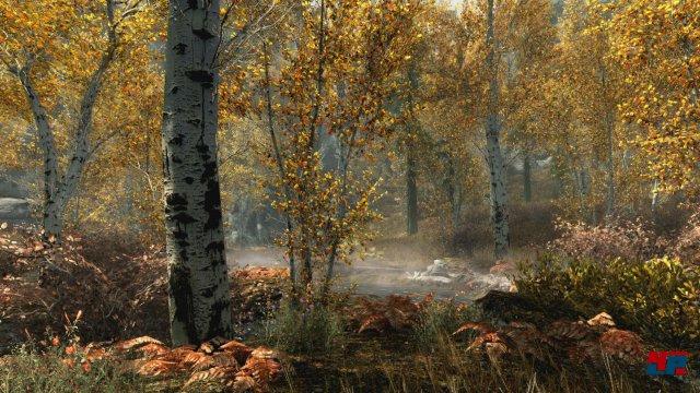 Screenshot - The Elder Scrolls 5: Skyrim (PC) 92527429