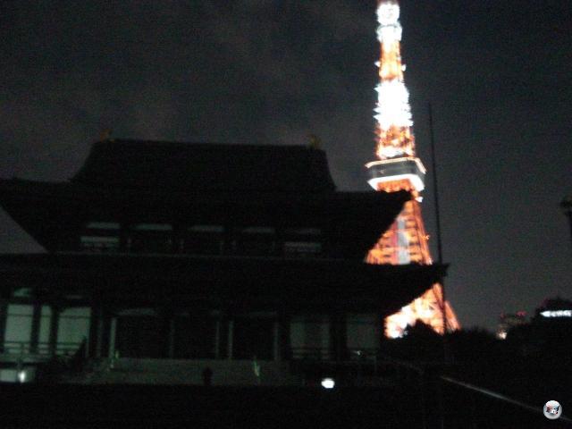 Außerdem mussten wir uns natürlich noch den berühmten Tokyo Tower gönnen, den wir zwar wunderbar vom Hotelzimmer aus ansehen, aber noch nie aus der Nähe bestaunen konnten. Auf dem Weg da hin: Ein wunderbarer Schrein sowie die lauteste Grillen-Familie der Welt. Obwohl, wir kennen Japan: Es könnte genauso gut vom Band gekommen sein. Für die Atmosphäre. 2013118