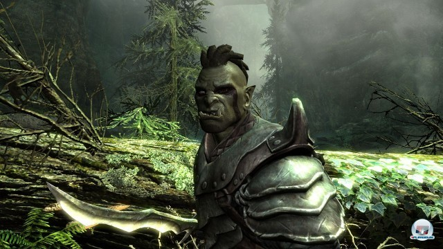 Screenshot - The Elder Scrolls V: Skyrim (PC) 2218027