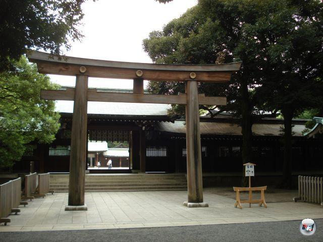 Etwas bisschen spirituelles Krafttanken vor Messebeginn: Der Yoyogi-Park im Herzen von Tokyo ist zum Spazierengehen hervorragend geeignet! Insidertipp für Japan-Reisende: