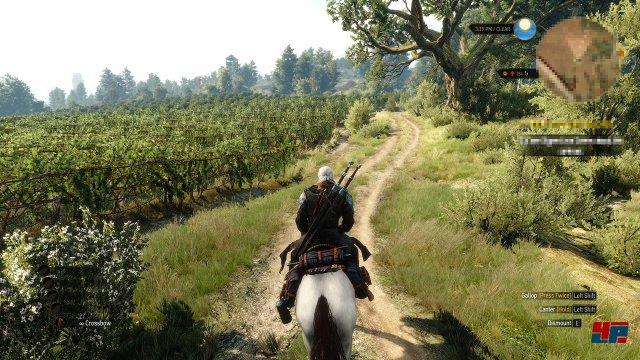 Screenshot - The Witcher 3: Wild Hunt (PC) 92514137