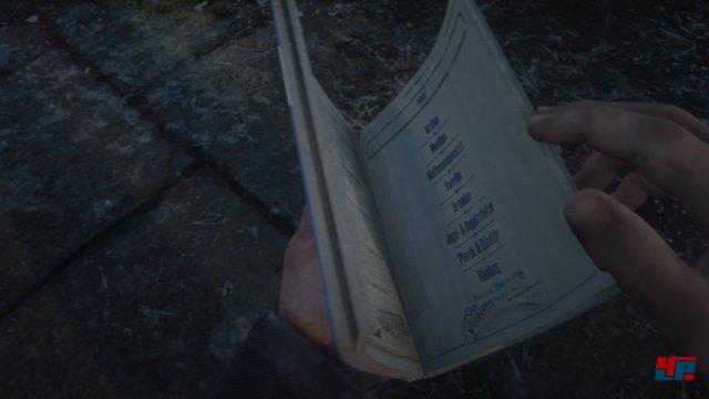 Screenshot - Red Dead Online (Beta) (PS4) 92578418