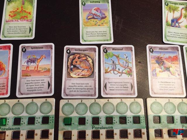 Screenshot - Evolution (Spielkultur)