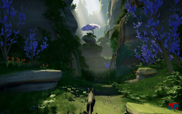 Screenshot - Lost Ember (PC)