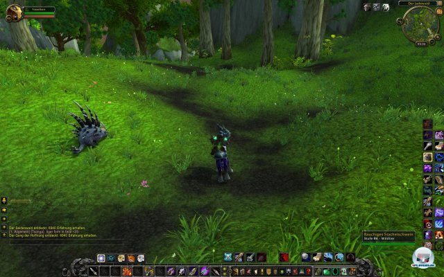 Screenshot - World of WarCraft: Mists of Pandaria (PC) 2334072
