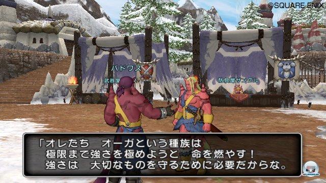 Screenshot - Dragon Quest X Online (Wii) 2273502