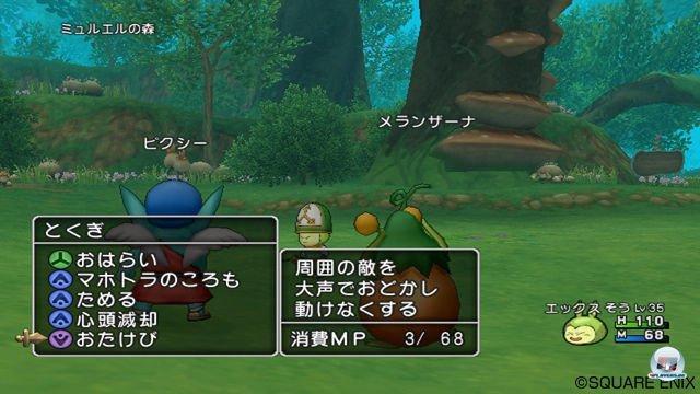 Screenshot - Dragon Quest X Online (Wii) 2295652