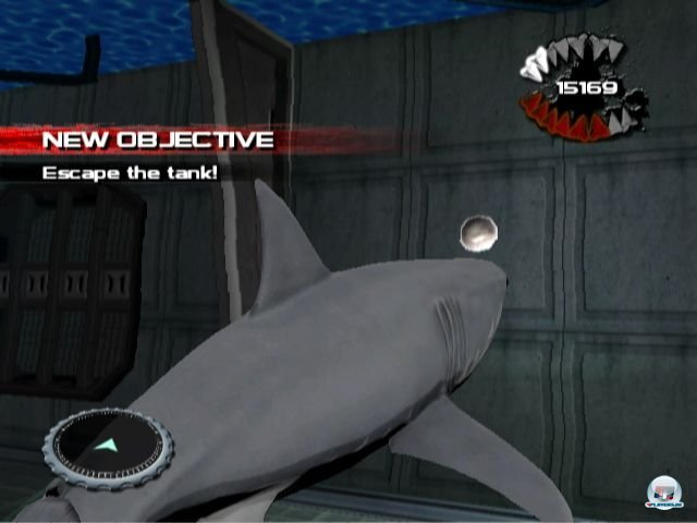 Screenshot - Jaws: Ultimate Predator (Wii) 2295047