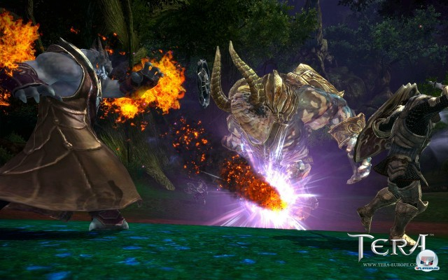 Screenshot - TERA (PC) 2241152