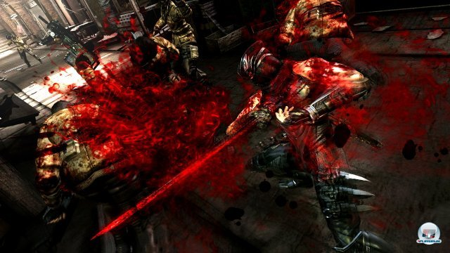 Screenshot - Ninja Gaiden 3 (PlayStation3) 2290032
