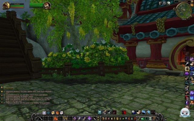 Screenshot - World of WarCraft: Mists of Pandaria (PC) 2334017