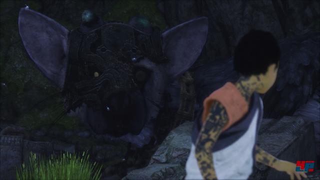 Der Protagonist wacht mit lauter Zeichen auf seinen Armen in einer Höhle neben dem Biest auf.