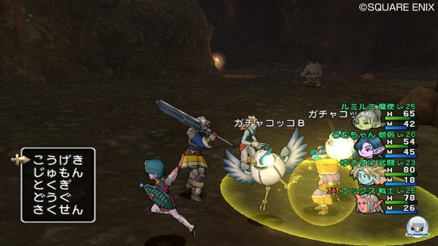 Screenshot - Dragon Quest X Online (Wii) 2368817
