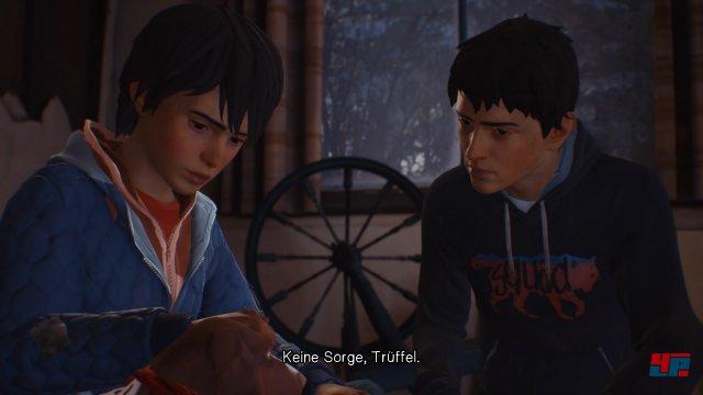 Als großer Bruder muss Sean sich genau überlegen, wie er Daniel erziehen will.