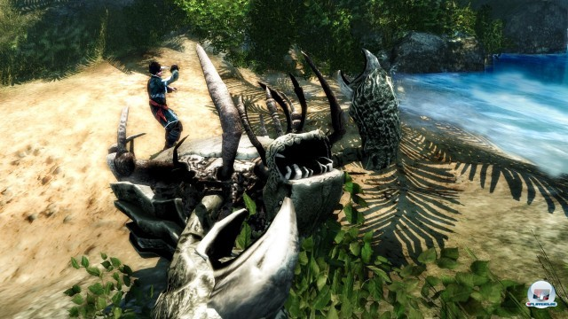 Screenshot - Risen 2: Dark Waters (PC) 2222778