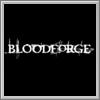 Erfolge zu Bloodforge