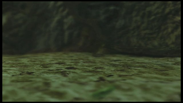 Totenkopf-Szene